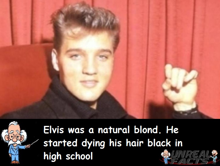 What Was Elvis Presley S Natural Hair Color