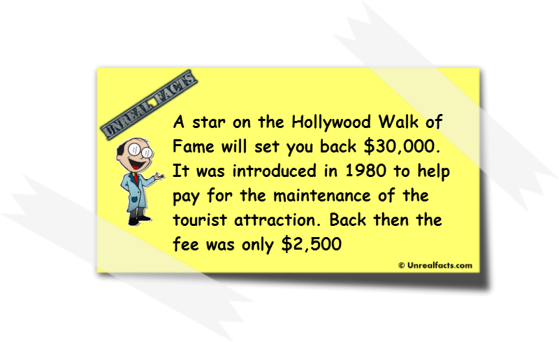 hollywood walk of fame cost