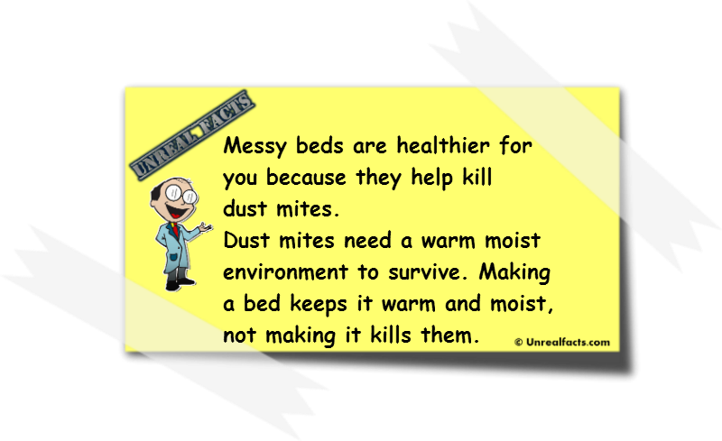 messy beds are healthier
