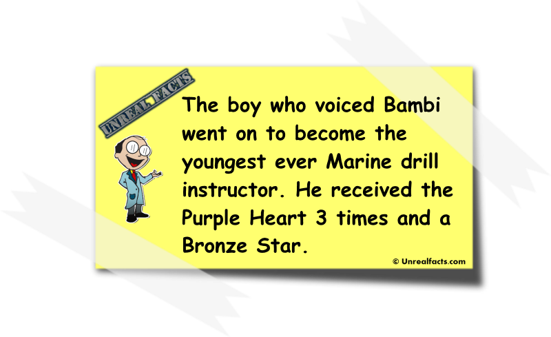 bambi voice drill instructor