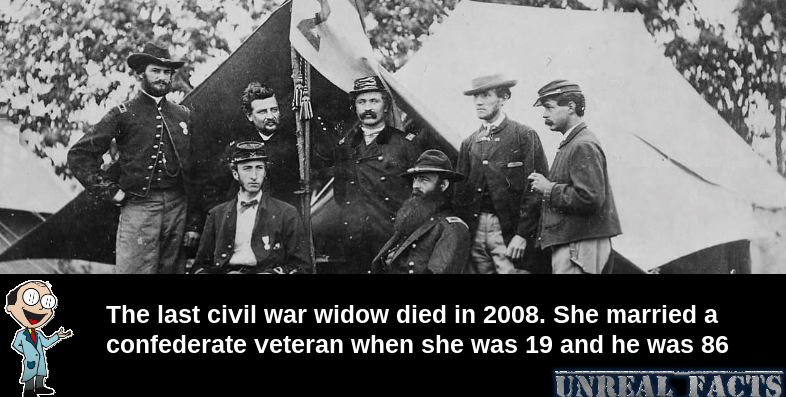 civil_war_widow