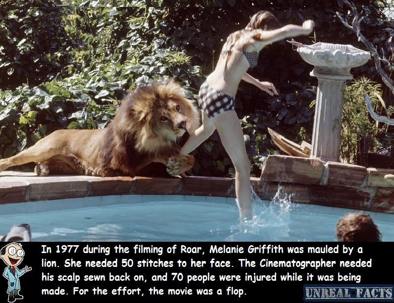 melanie griffith mauled by lion