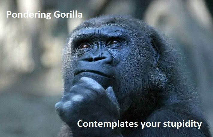 did word gorilla originate