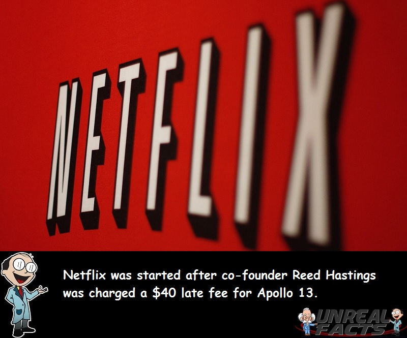 netflix founded late fee