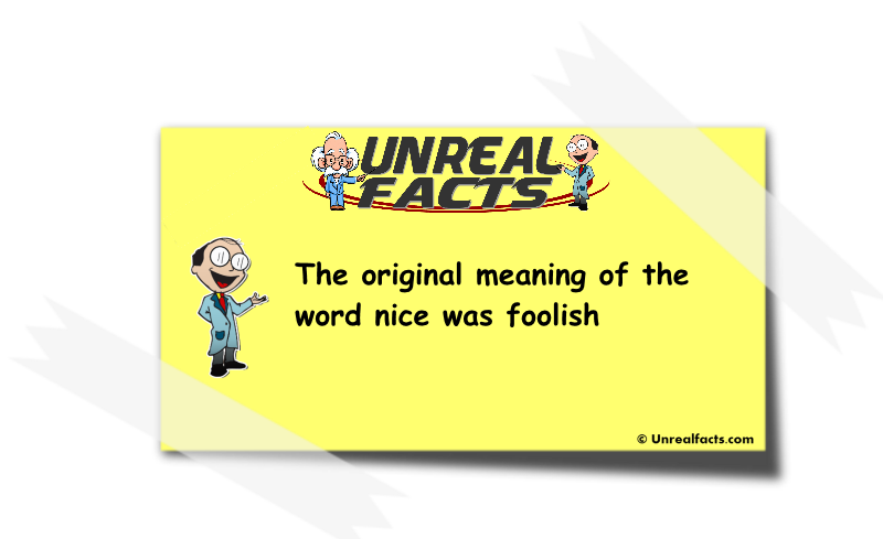 original meaning of the word nice